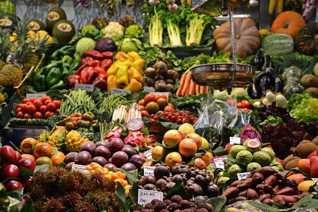 均衡飲食是維持 免疫力的基本要求